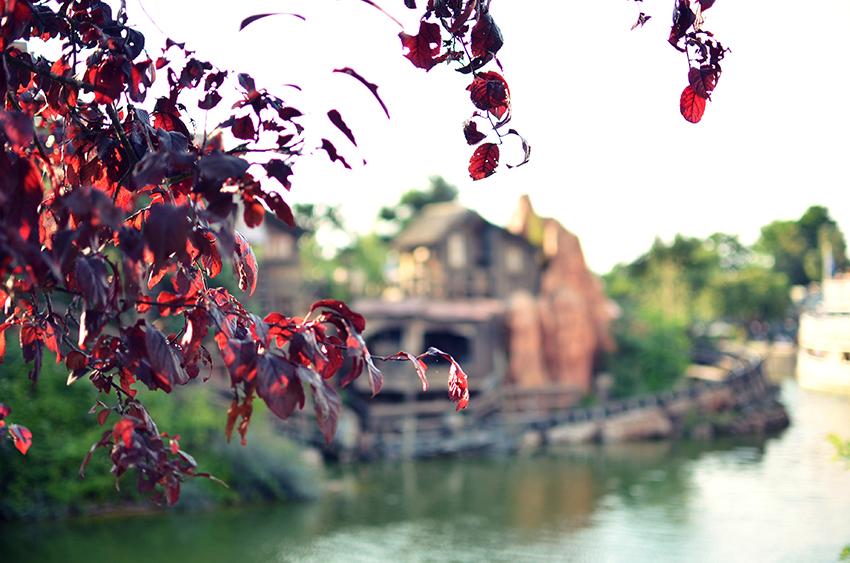 Disneyland // Frontierland