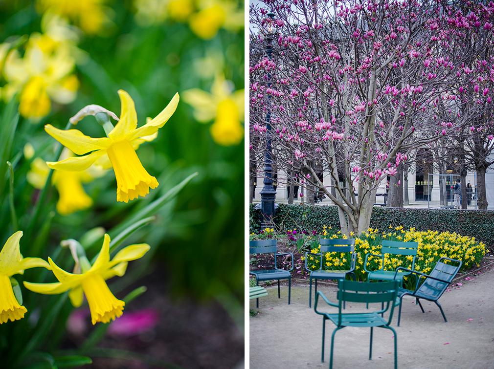 Les Jolies Choses - Jardin du Palais Royal