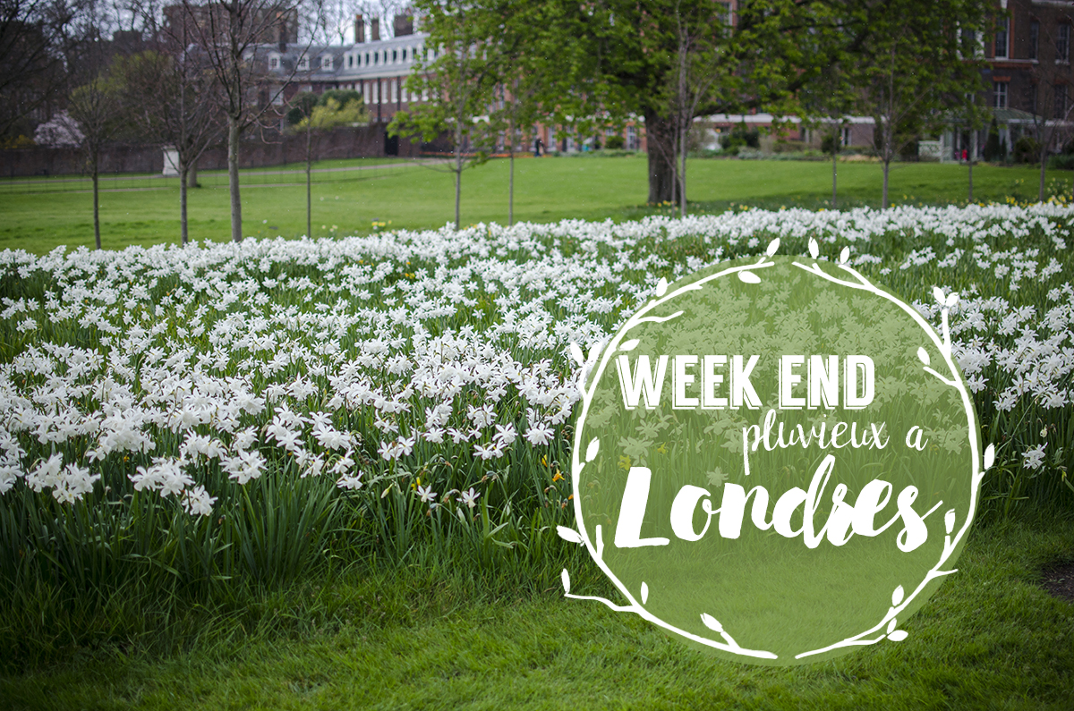 Un Week-end à Londres - Whatever Works