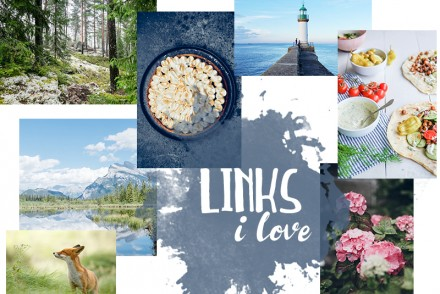 Links I Love #115